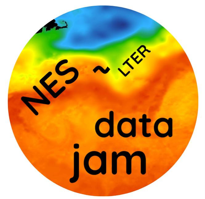 NES Data Jam logo