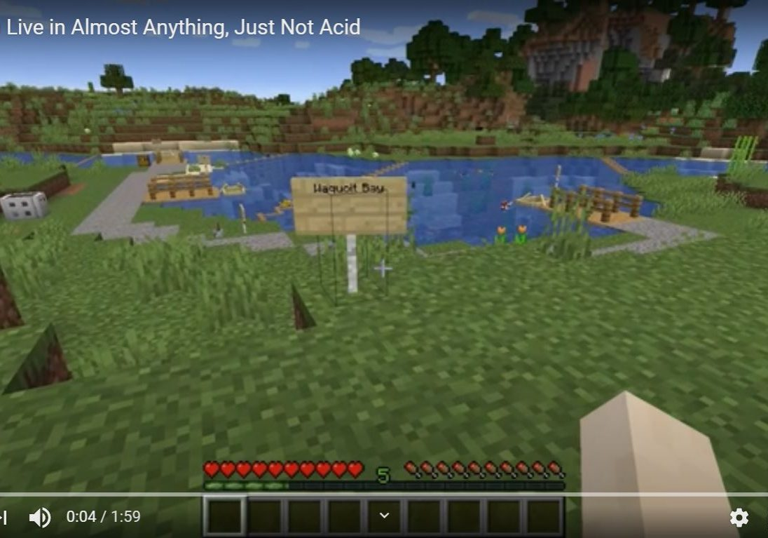 Screenshot of Minecraft world created by Simon Spahn-Rodriguez depicting his data story about the effects of ocean pH on fish larvae.