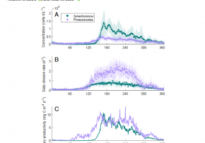 Fowler et al., 2020, https://doi.org/10.1073/pnas.1918439117